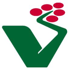 Left-green_movement